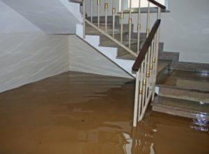 Sewage flooding a home