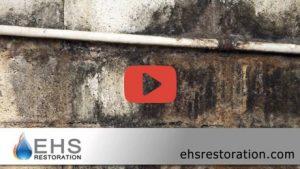 Video still from EHS Restoration